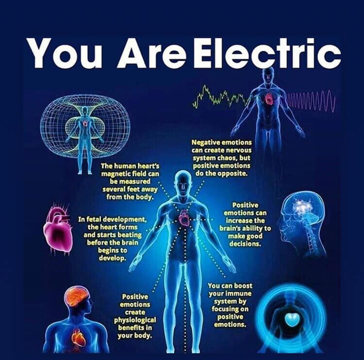 you are electric